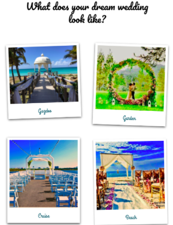 Virtual Destination Wedding